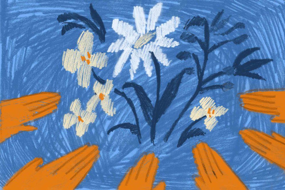 (Illustration by Shoshana Gordon / ProPublica)