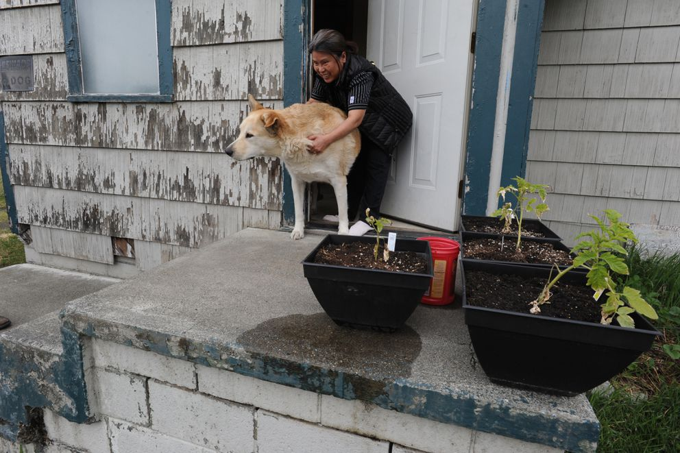 Tuoi Yungbauer hangs on to her dog Tequila at the front door of her Mountain View home on Thursday, May 18, 2017. (Bill Roth / Alaska Dispatch News)