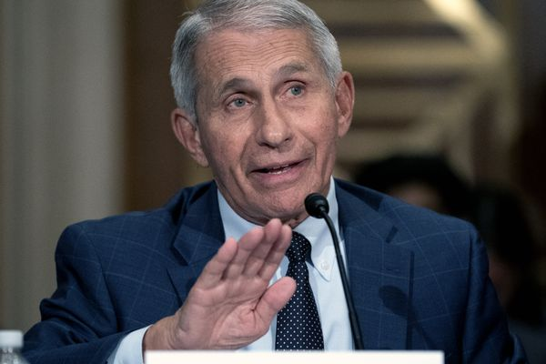 Dr. Anthony Fauci, director of the National Institute of Allergy and Infectious Diseases, testifies before the Senate Health, Education, Labor, and Pensions Committee at the Dirksen Senate Office Building in Washington on Tuesday, July 20, 2021. (Stefani Reynolds/The New York Times via AP, Pool)