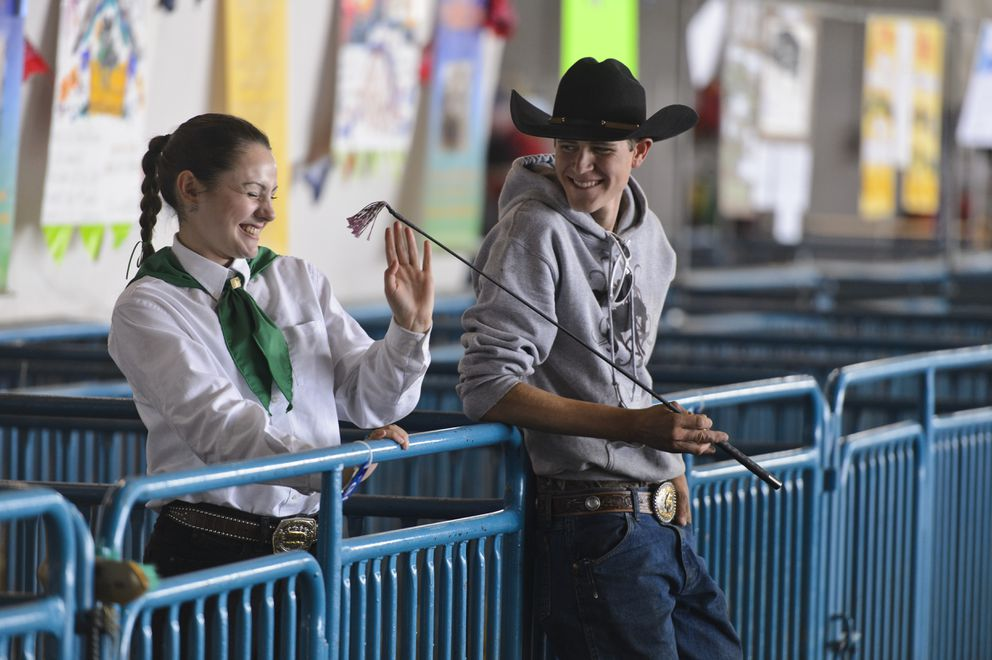 Callista Whitlatch, left, laughs with Seth Shelden as Whitlatch waits to compete in sheep and swine competitions at the Alaska State Fair. (Marc Lester / ADN)