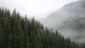 Why the Tongass' exemption from the Roadless Rule is good public policy