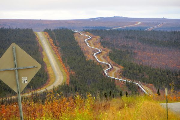 After a flight from Coldfoot to Fairbanks was grounded, author Scott McMurren took a van back to Fairbanks—and captured this photo of the Pipeline from a hill on the Dalton Highway. (Photo by Scott Mcmurren)