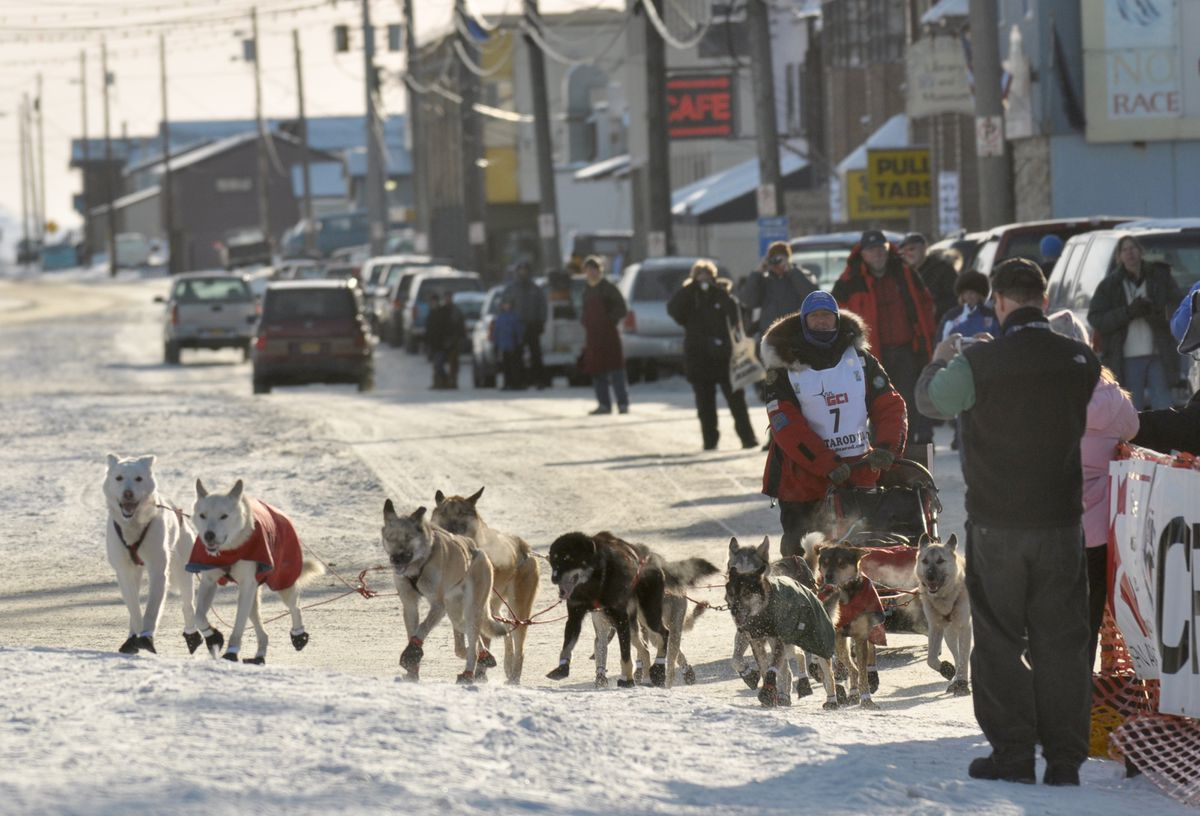 A musher pulls into the finish chute and under the burled arch on Front Street in Nome during the 2010 Iditarod. (Bob Hallinen / Anchorage Daily News)