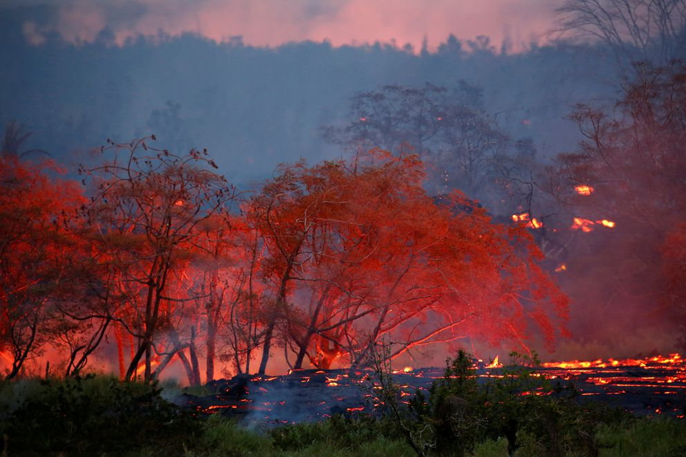 Lava flows through trees on the outskirts of Pahoa during ongoing eruptions of the Kilauea volcano in Hawaii, May 19. (Terray Sylvester / Reuters)