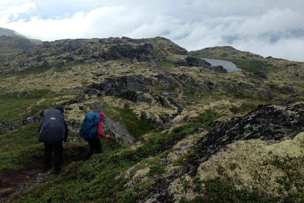 Suzanna Caldwell, right, and Nick Parker wind through the tundra on the Kesugi Ridge Trail at Denali State Park on Saturday, July 30, 2016. (Vicky Ho / Alaska Dispatch News)