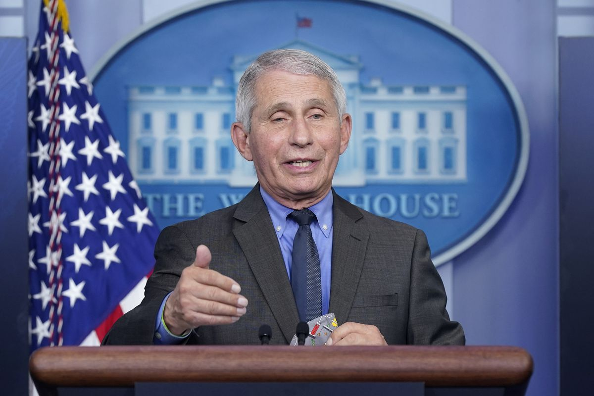 FILE - In this April 13, 2021, file photo, Dr. Anthony Fauci, director of the National Institute of Allergy and Infectious Diseases, speaks during a press briefing at the White House in Washington. (AP Photo/Patrick Semansky, File)