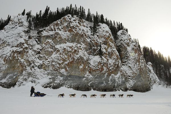 Kristy Berington moves past the cliffs along the Yukon River just outside of the Ruby checkpoint. (Bob Hallinen / Alaska Dispatch News)