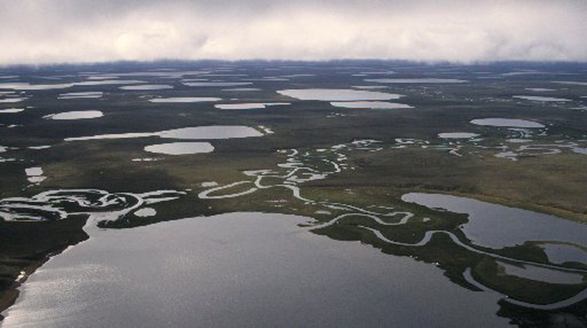 A northern section of the National Petroleum Reserve-Alaska on the state's North Slope. (Anne Raup / ADN archive 1997)