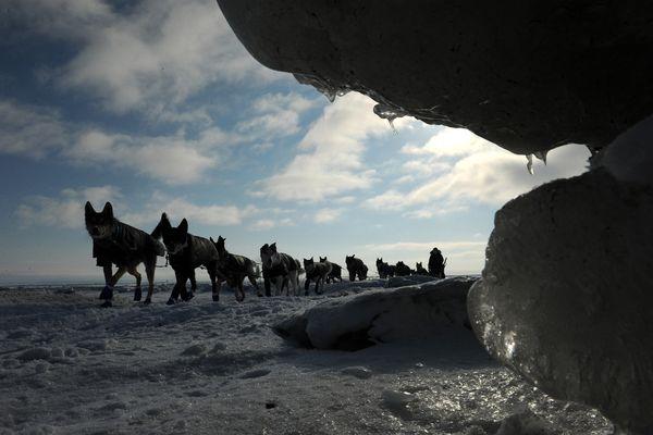 Iditarod musher Jessie Royer comes into the village of Koyuk past some piled sea ice near the shoreline during the 2017 Iditarod Trail Sled Dog Race on Monday, March 13, 2017. (Bob Hallinen / Alaska Dispatch News)