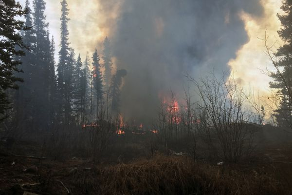 Flames can seen from a 2-acre wildfire burning in the woods near downtown Glennallen on Wednesday, April 28, 2021. (Photo by Mike Trimmer / Alaska Division of Forestry)