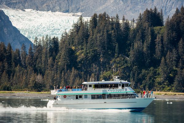 A Kenai Fjords Tours boat passes Pedersen Glacier in Kenai Fjords National Park on Wednesday, August 20, 2014. (Loren Holmes / ADN archive)