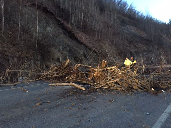 A rockslide closed both lanes of the Seward Highway south of Anchorage Monday morning. The slide included trees, rocks and mud. (Alaska Department of Transportation and Public Facilities)