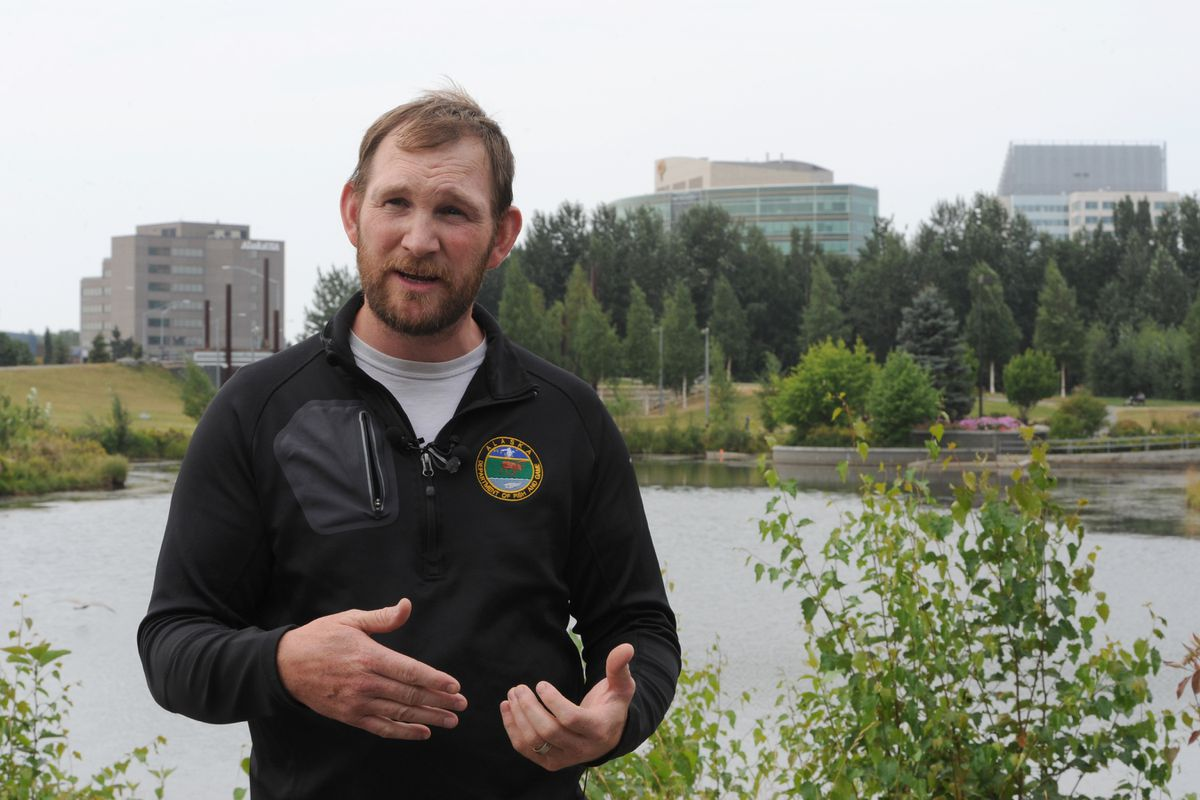 Alaska Department of Fish and Game sport fish area management biologist Jay Baumer explained on Tuesday that they will use the chemical rotenone to eradicate illegally introduced goldfish from a man-made pond at Cuddy Family Midtown Park starting Wednesday. (Bill Roth / ADN)