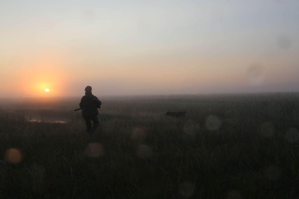 Christine Cunningham and her dog Cheyenne hunt for ducks on the Kenai River Flats on Labor Day. (Steve Meyer)