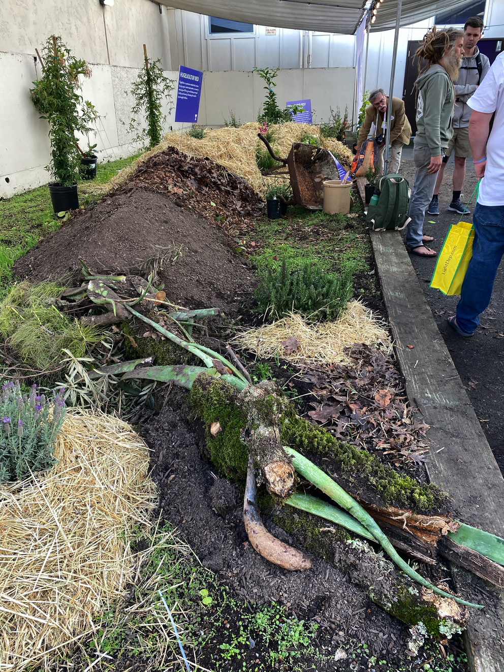 A demonstration hugelkultur garden at the Santa Rosa fairgrounds, Dec. 2019. Hugelkultur is a German practice that uses dead trees to create garden beds. (Photo by Jeff Lowenfels)