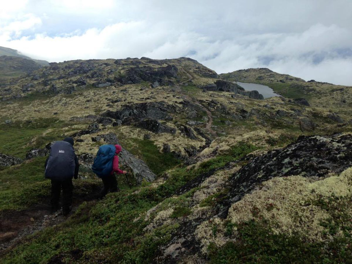 Suzanna Caldwell, right, and Nick Parker wind through the tundra on the Kesugi Ridge Trail at Denali State Park. (Vicky Ho / Alaska Dispatch News)