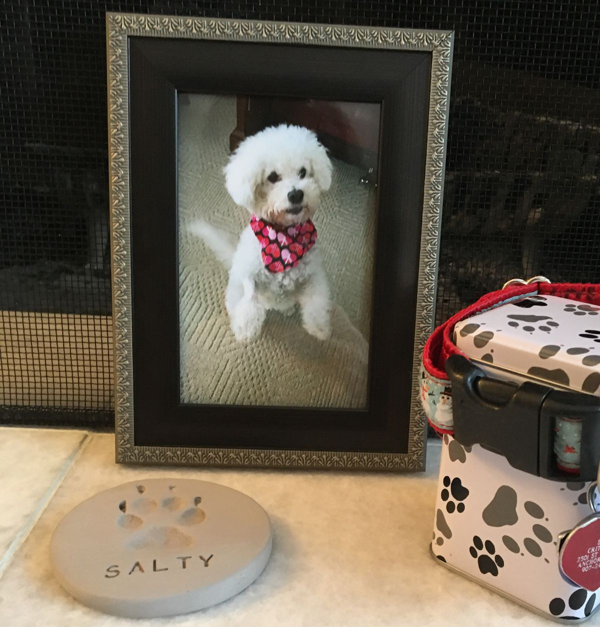 The Crittendens erected a small memorial for their dog, Salty, in front of their fireplace after he was killed at an East Anchorage boarding kennel in December 2018. (Madeline McGee / ADN)
