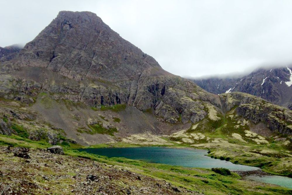 The lower rampart of Mount Williwaw towers over the Williwaw Lakes area on July 17, 2015. (Vicky Ho/ ADN archive)
