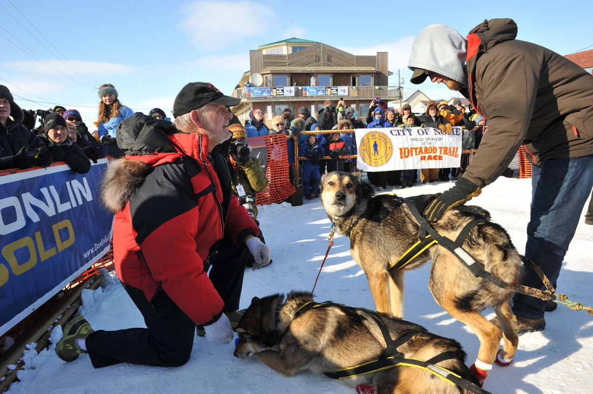 Iditarod musher Mitch Seavey's father, Dan Seavey, and son, Danny Seavey, visit with lead dogs Crisp and Pilot after Mitch Seavey won the 2017 Iditarod Trail Sled Dog Race on March 14. (Bob Hallinen / Alaska Dispatch News)