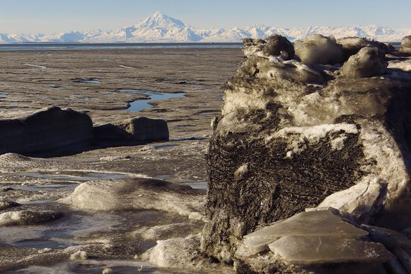 The Kenai River flats at its mouth is exposed by a minus tide in March 2017. Mount Redoubt is across Cook Inlet in the background. (Clark Fair)