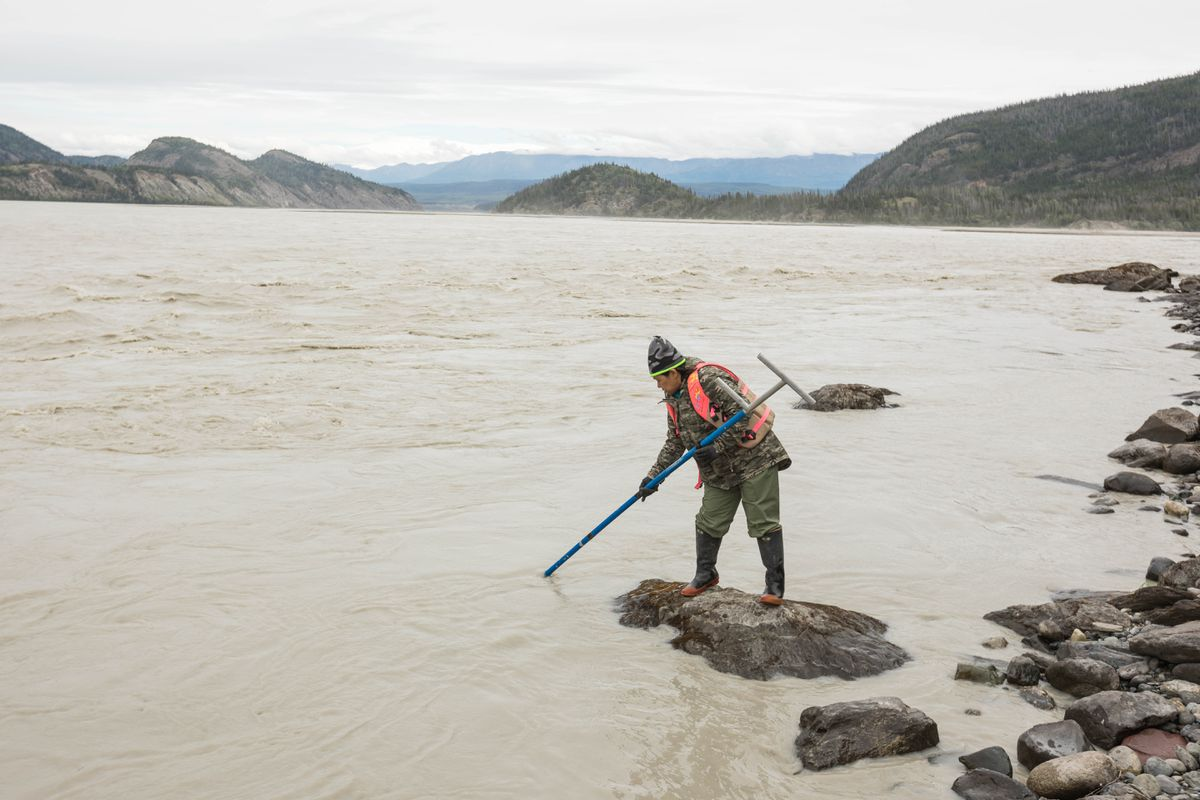 Anchorage resident Grace Rafael dipnets for salmon on the Copper River south of Chitina on June 29, 2017. (Loren Holmes / Anchorage Daily News)