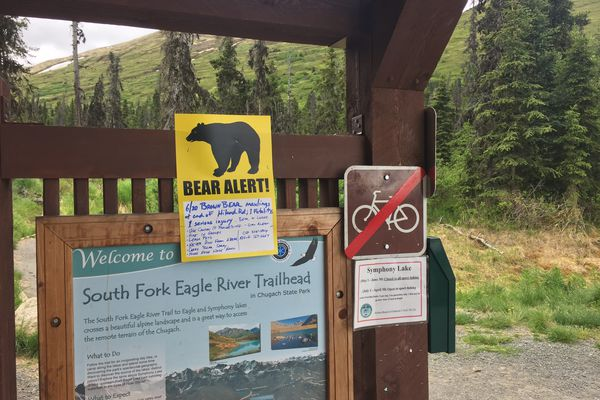 A sign at the South Fork trailhead warns hikers of bear maulings in the area Wednesday. On Friday, authorities confirmed Mike Soltis, 44, was killed by a bear. (Matt Tunseth/ADN)