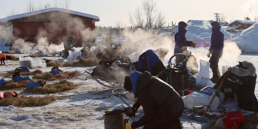 Mushers take care of their dogs in minus-20 temperatures in McGrath. (Zachariah Hughes/for ADN)