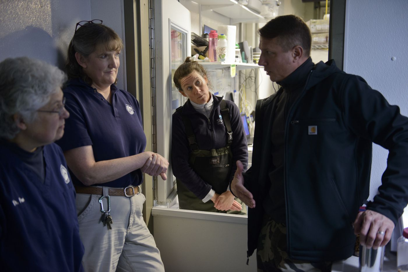 From left, Alaska SeaLife Center veterinarians Dr. Pam Tuomi and Dr. Carrie Goertz, talk with visiting aquarium professionals Jessica Whiton, of Shedd Aquarium, and George Biedenbach of Georgia Aquarium, on October 30, 2017. (Marc Lester / Alaska Dispatch News)
