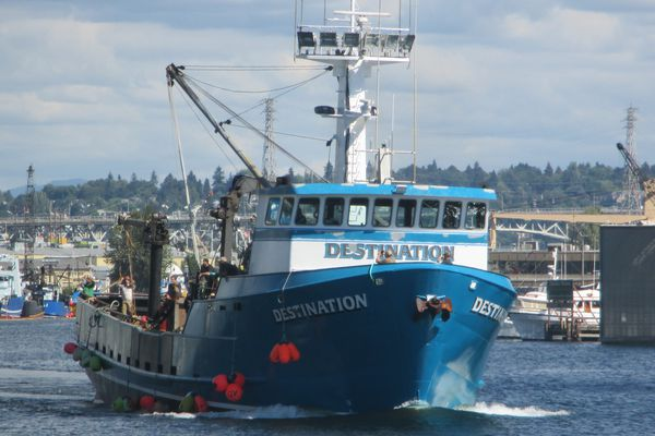 The search continued on Sunday, Feb. 12, 2017, for the 92-foot fishing vessel Destination, which went missing with six people aboard in the Bering Sea. The Destination sent out an emergency beacon on Saturday morning from a position about 2 miles northwest of St. George island. (Photo by Salty Dog Maritime Marketing)