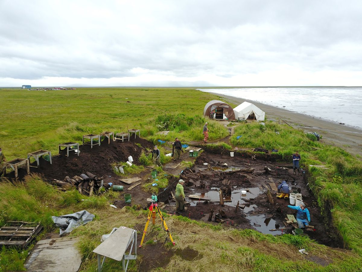 The Nunalleq archaeological site sits next to the Bering Sea near Quinhagak. (Sven Haakanson)