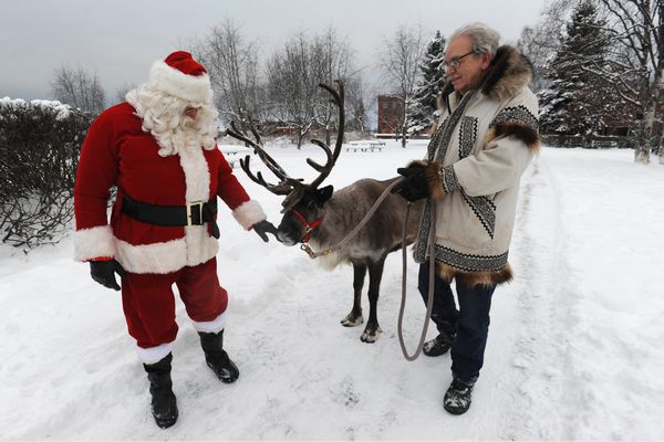 Santa Claus takes a look at Star the Reindeer with his owner Albert Whitehead at the Delaney Park Strip on Thursday, Dec. 20, 2018. (Bill Roth / ADN)