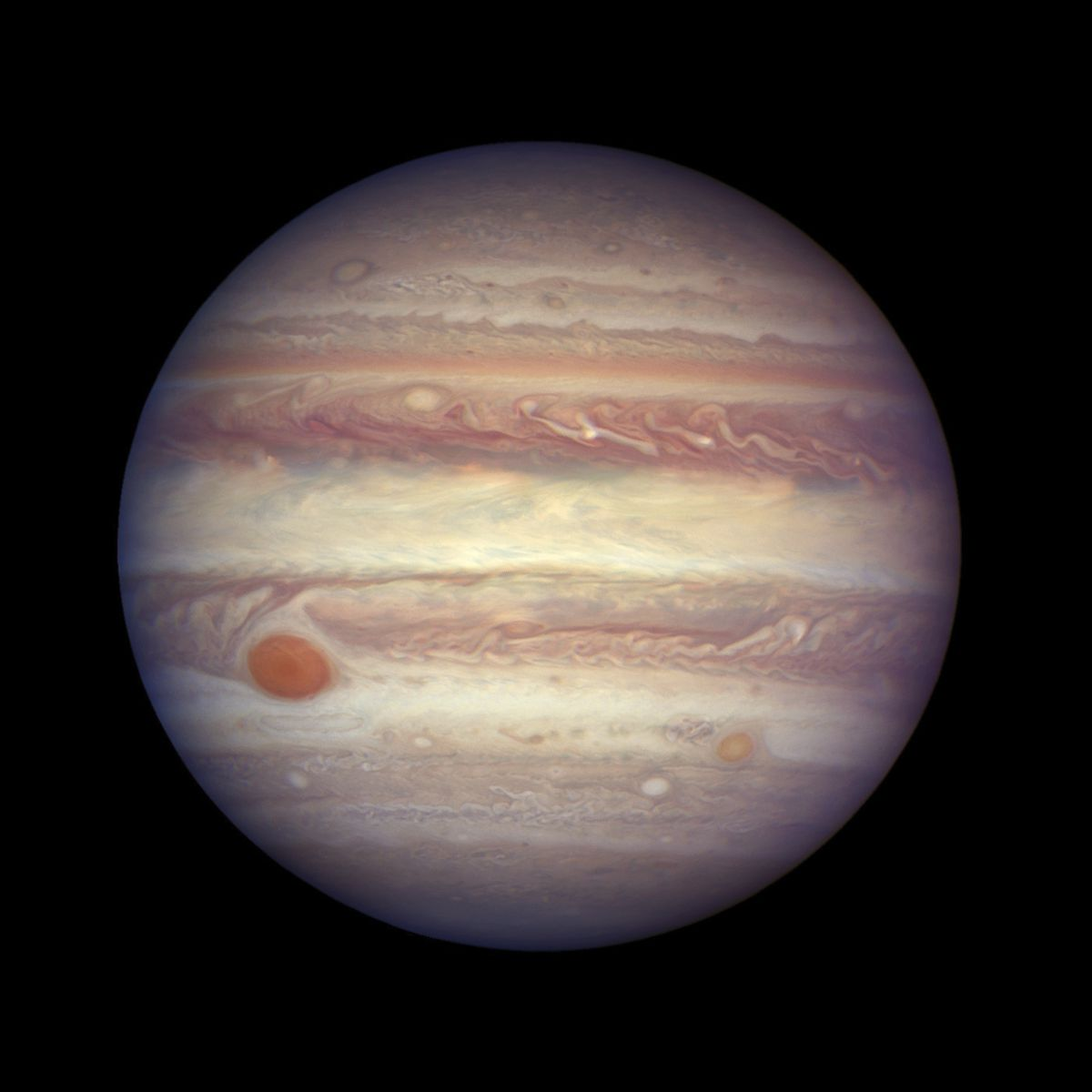 This April 3, 2017 image made available by NASA shows the planet Jupiter. A team of astronomers is reporting the recent discovery of a dozen new moons circling the giant gas planet. That brings the number of moons at Jupiter to 79, the most of any planet. The astronomers were looking for objects on the fringes of the solar system when they spotted the Jupiter moons. They found a dozen small moons. The confirmation of 10 was announced Tuesday, July 17, 2018; two were confirmed earlier. They're calling one moon an 'oddball' because of its unusual orbit. (NASA, ESA, and A. Simon (GSFC) via AP, File)
