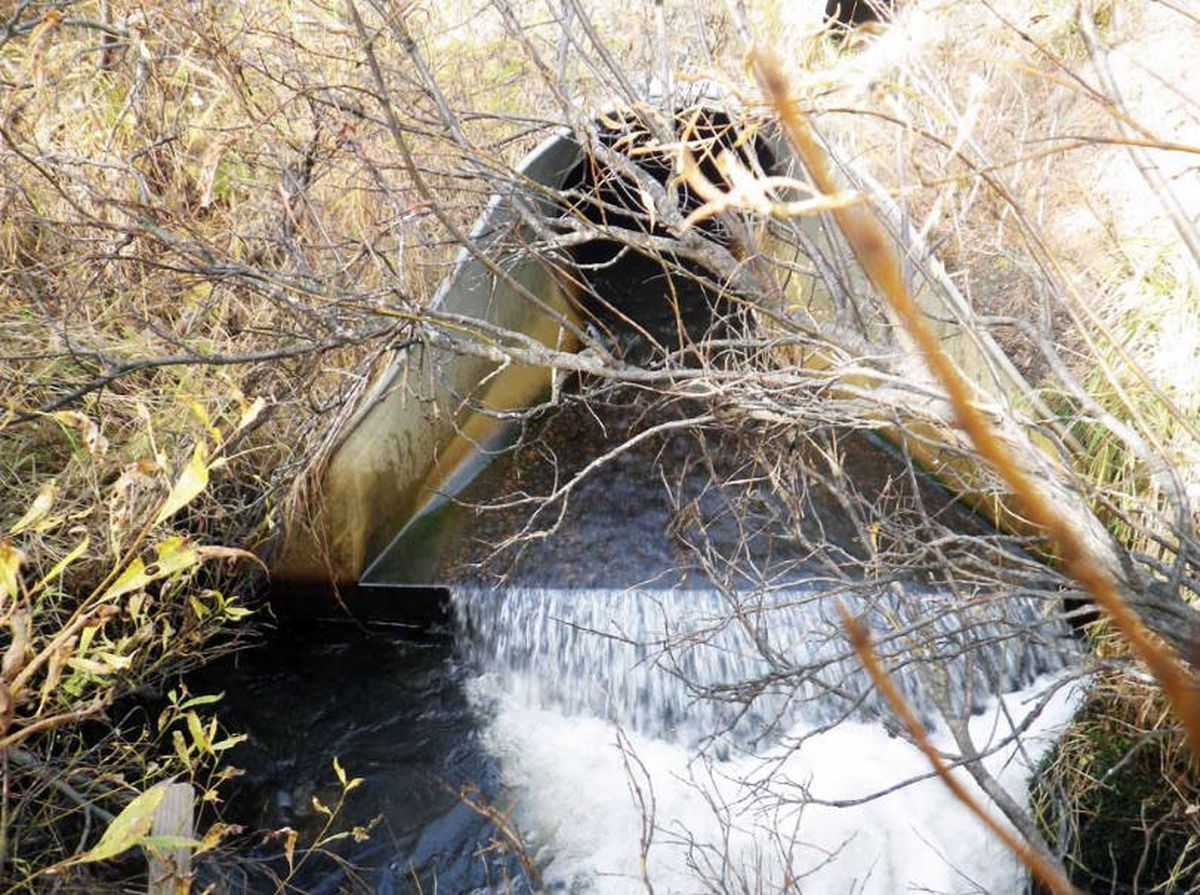 The Pebble Limited Partnership has released a draft compensatory mitigation plan that includes commitments to improve fish passage at several culverts identified by the Alaska Department of Fish and Game such as this one near Dillingham. (Alaska Department of Fish and Game photo)