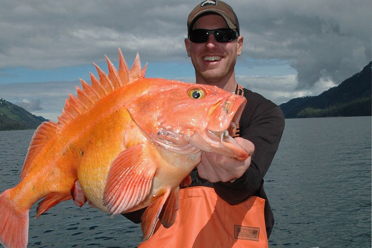 Clayton Finnegan with a yelloweye rockfish caught in Prince William Sound. (Tony Weaver)