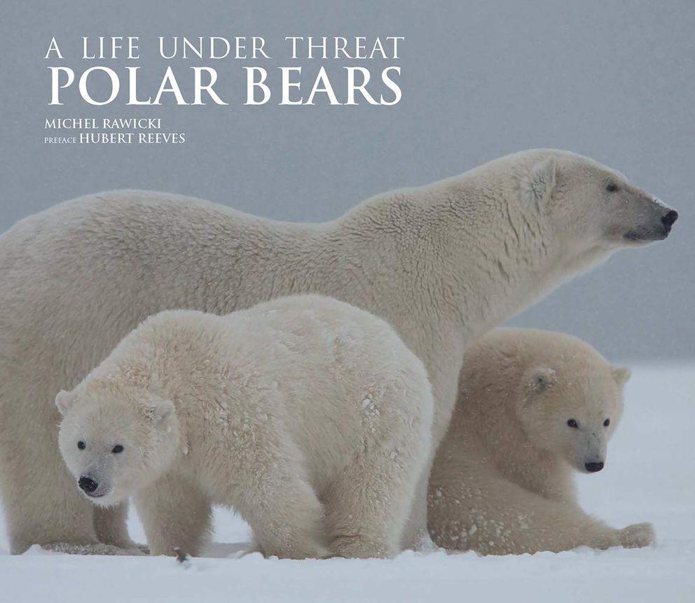 'Polar Bears: A Life Under Threat, ' by Michael Rawicki