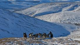 Denali Highway is ideal training ground for mushers, especially those thinking about the 2022 Quest