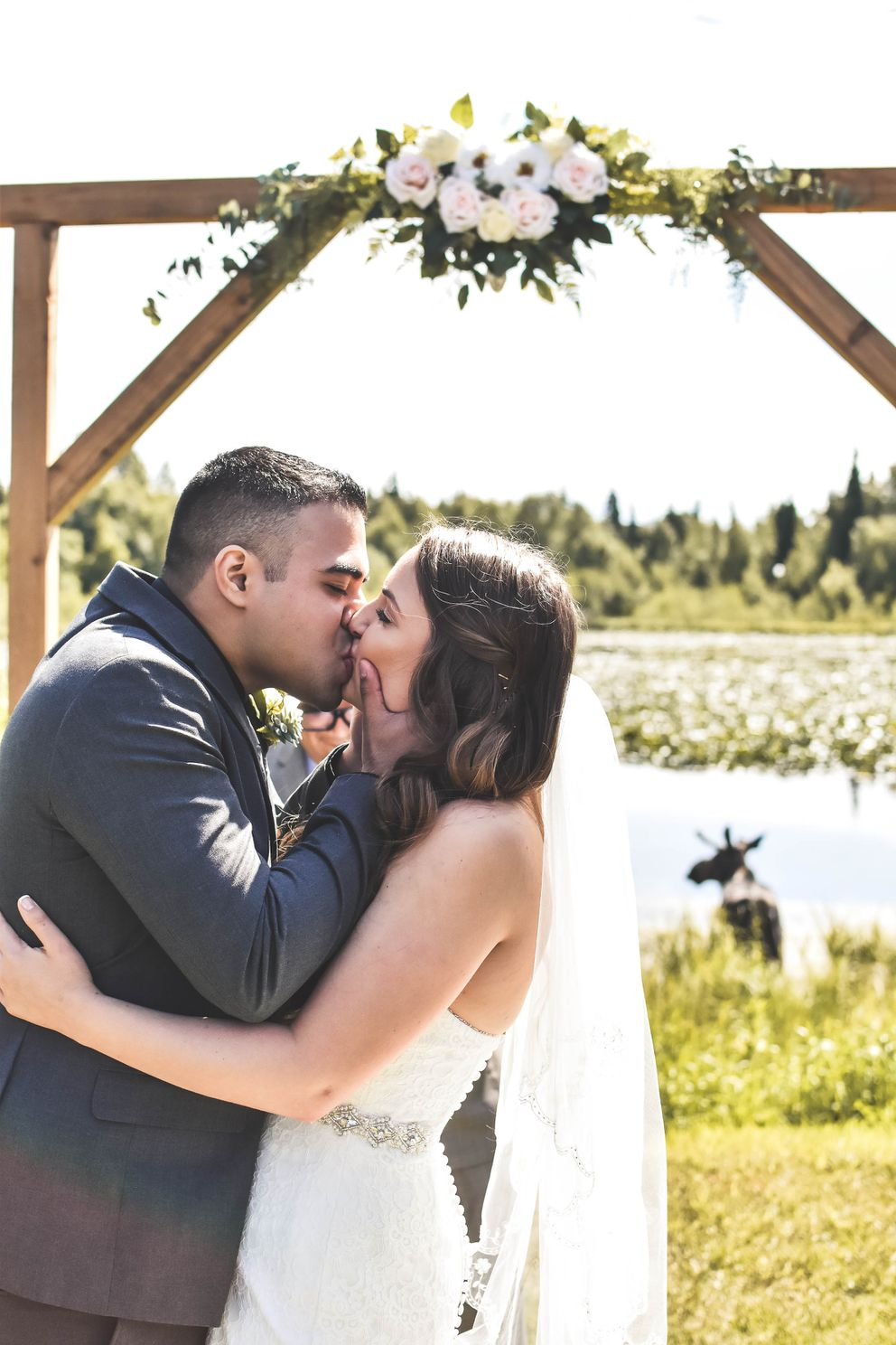 The moose that crashed Shandalyn and Alan Cuellar's wedding ended up hanging out by a pond for most of the reception. (Photo courtesy of Bria Celest)