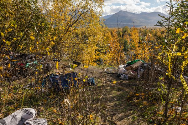 A burned pile of mail, bicycles, cell phones and clothes sits in a wooded area in Nunaka Valley Park Tuesday, Sept. 25, 2018. (Loren Holmes / ADN)