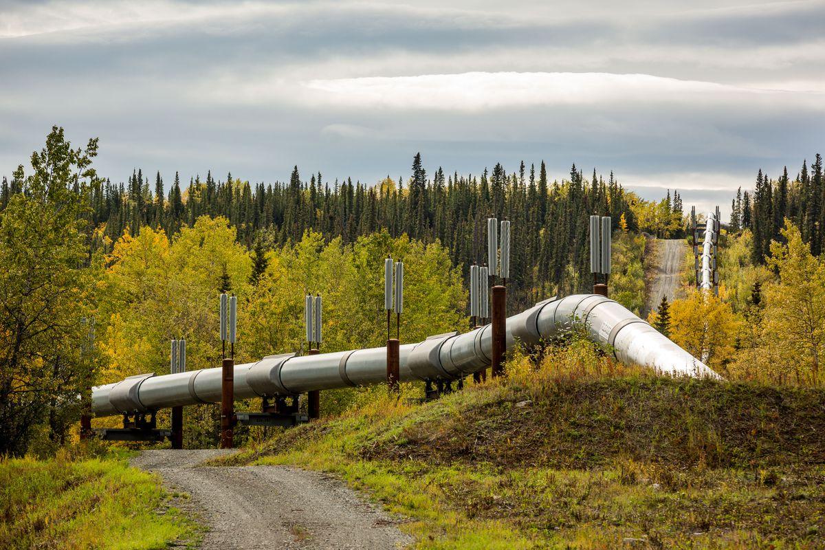 The trans-Alaska Pipeline, seen near Copper Center on Tuesday, Sept. 9, 2014. (Loren Holmes / ADN)