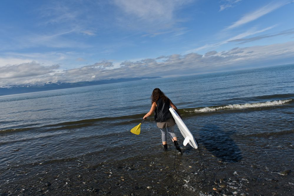 Stephanie Zuniga enters the Kachemak Bay water with her paddle board at Bishop's Beach in Homer on June 20, 2018.(Marc Lester / ADN)