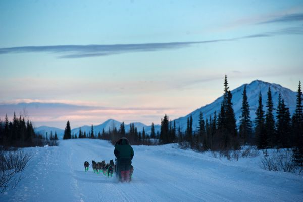 A team leaves the staring line. Seventeen two-musher teams started the Denali Doubles, a 226-mile race along the Denali Highway on Thursday, February 4, 2016, near Cantwell. The race was founded and organized by Jeff King. (Marc Lester / ADN)
