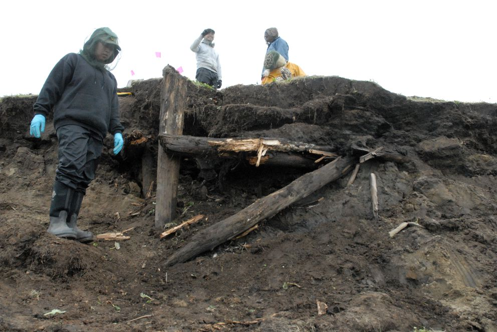 Timbers of a house are exposed at the Walakpa site southwest of Utqiaġvik following a storm in late summer of 2013. The discovery prompted renewed excavation following a hiatus since work was last conducted there in the late 1960s. (UIC Science)