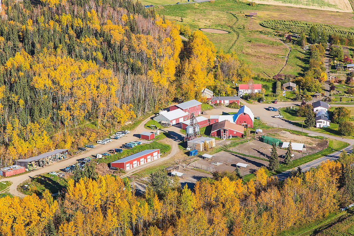 The Fairbanks Experimental Farm on the University of Alaska Fairbanks campus opened in 1906. (Todd Paris / UAF archive September 2014)