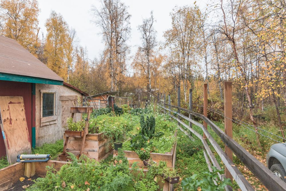 Garden. The Top of the Hill Farm near Fairbanks is for sale in October 2017. The owners will judge essays in order to determine the next owners. It costs $1,000 to submit an essay. (Doug Lange)