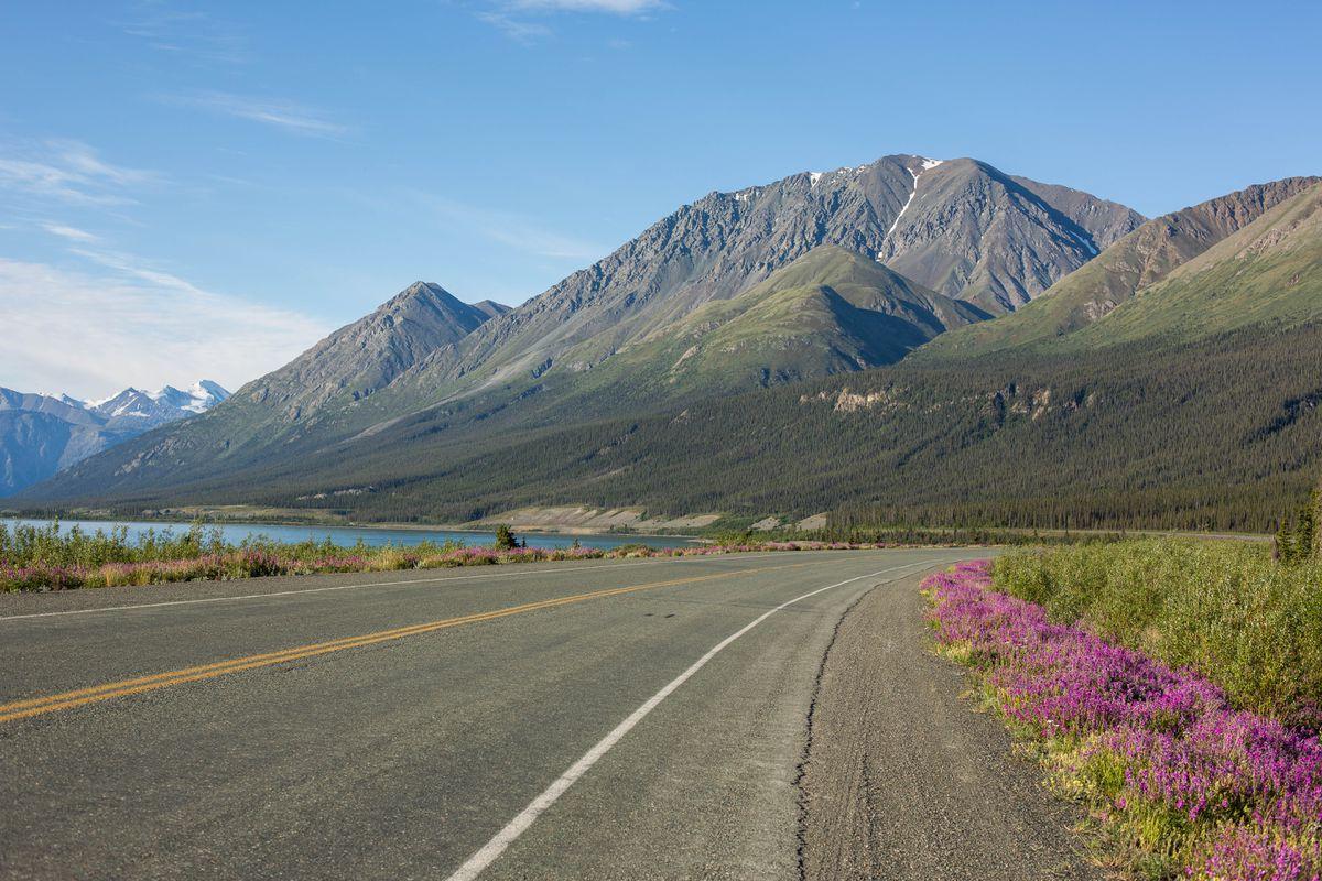 The Alaska Highway runs along Kluane Lake near Destruction Bay in the Yukon territory on June 29, 2015. (Loren Holmes / ADN archive)