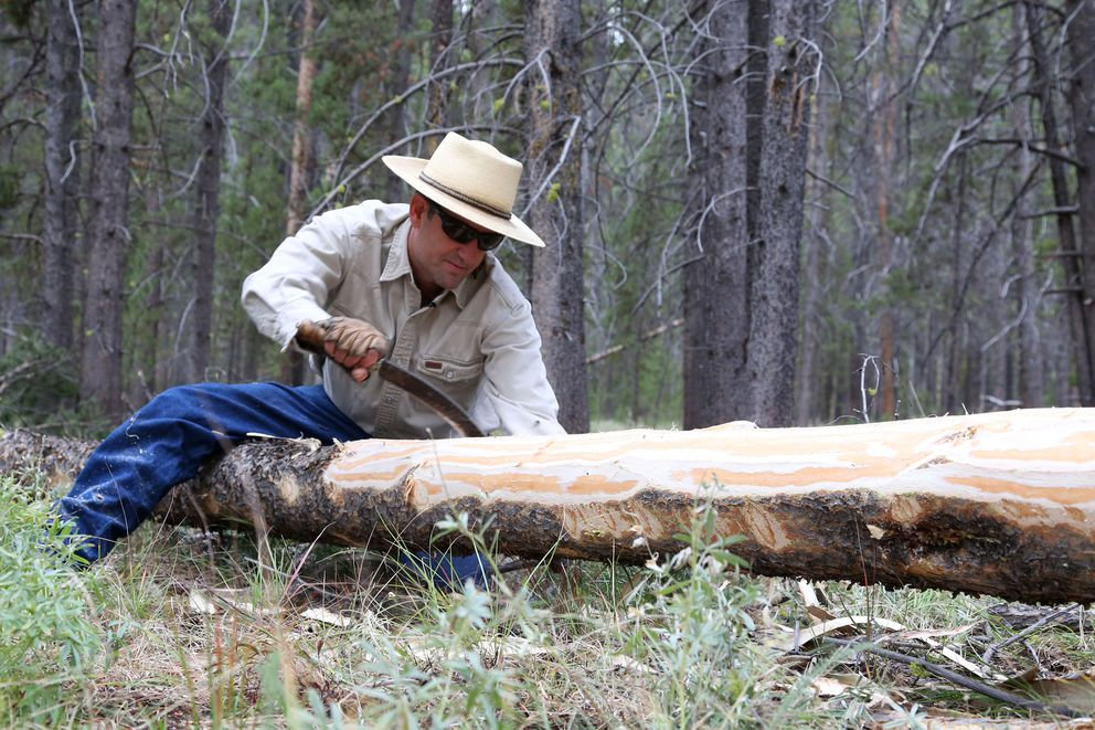 "Steve Primm, conservation director at People and Carnivores, build a ""bear pole"" on which hunters can hang their catches out of grizzlies' reach. He also is working with Montana ranchers on practices that will protect their herds as well as the bears. Washington Post photo by Whitney Shefte"