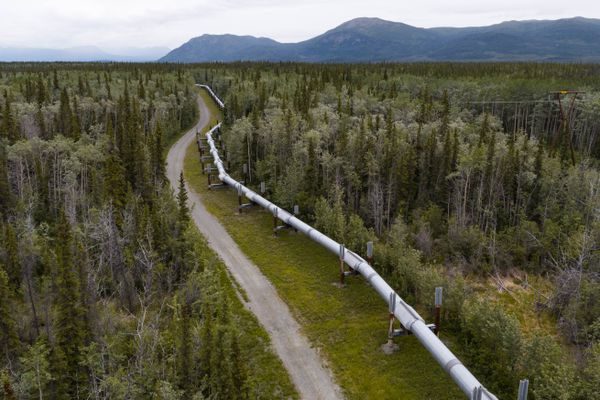 An aerial view of the trans-Alaska oil pipeline near Copper Center on June 29, 2017. (Loren Holmes / Alaska Dispatch News)