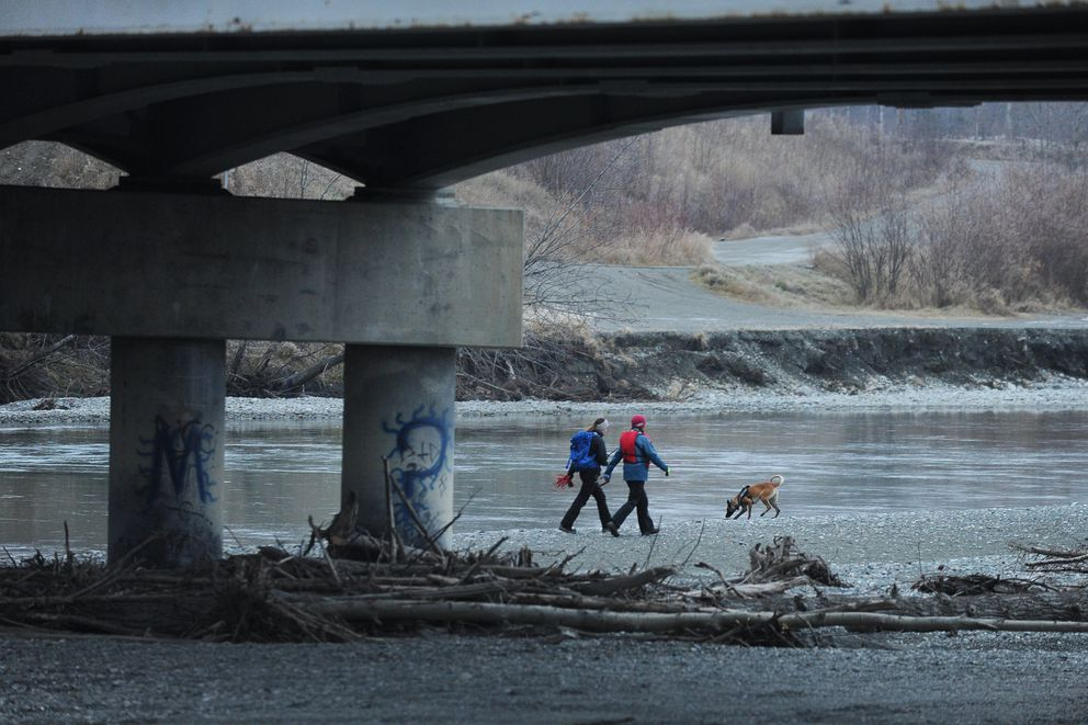 A search and rescue dog and two people search along the bank of the Matanuska River near the Old Glenn Highway bridge for missing person Rachel Lynn Mallard in Palmer, Alaska on Friday, Nov. 3, 2017. (Bob Hallinen / ADN)