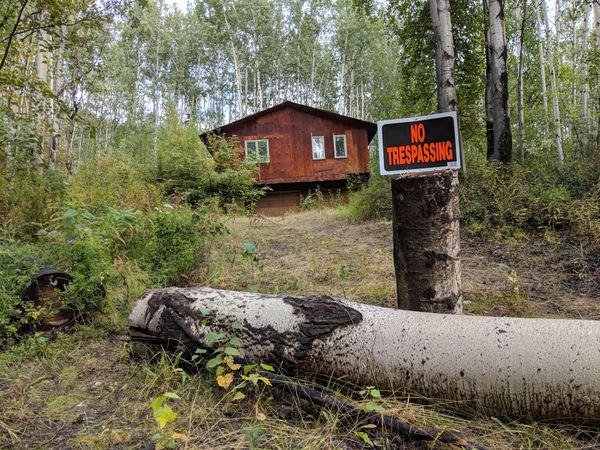 A view from the road of Paul Pesika's property on Red Fox Drive in Fairbanks. The building visible is a garage. The tree fell in a wind storm, neighbors say. (Michelle Theriaut Boots / ADN)