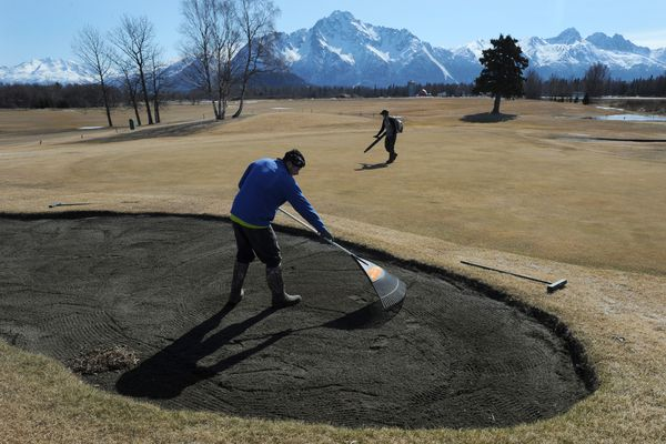 Garrett Stortz, left, and Garrett Conroy remove a winter's worth of debris from the 2nd hole sand trap and green on their first day back working on the grounds crew at Palmer Golf Course on Monday, April 16, 2018. They are making the course playable in preparation for 10 holes to be opened, walking only, on Wednesday and most likely all 18 holes on Saturday if the course firms up from snow melt. (Bill Roth / ADN)